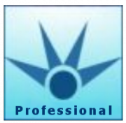 testIDEA_pro